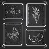 Handdrawn Illustration - Health and Nature Set Collection of Herbs on Black Chalkboard Natural Supplements Basil Parsley Rosemary Chili Peppers