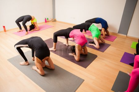 people doing a backbend pose