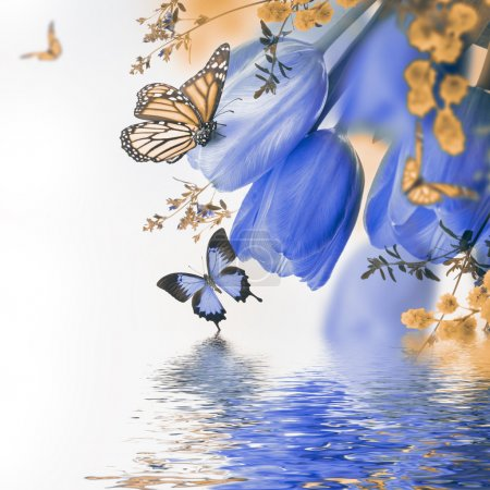 Photo pour Blue tulips with mimosa and butterflies reflected in water, spring background - image libre de droit