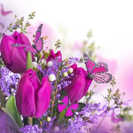 Photo pour Tulipes bleues avec mimosa et papillon - image libre de droit