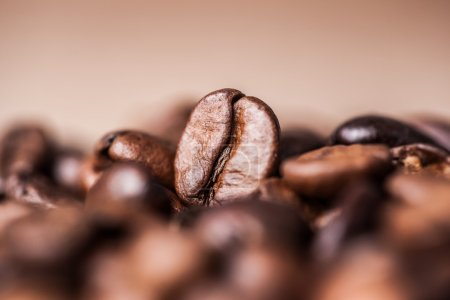 Photo for Close-up of Coffee beans on vintage background - Royalty Free Image