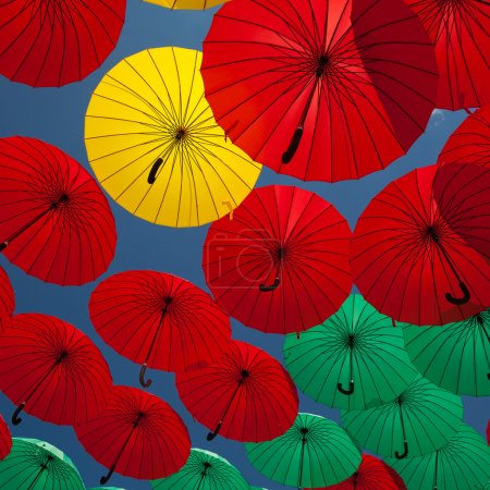 Bright colorful umbrellas