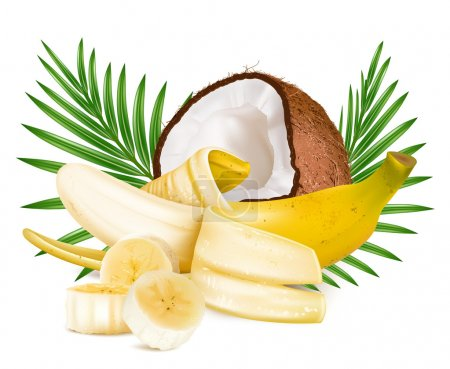 Illustration for Open ripe banana and coconut with leaves. Vector illustration. - Royalty Free Image