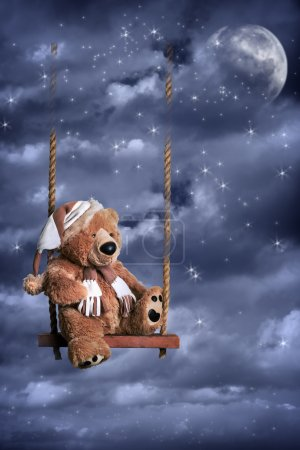 Teddy Bear In Night Sky