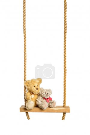Photo for Teddy bears on rope swing isolated on a white background - Royalty Free Image