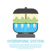 Hydroponic system icon vector illustration