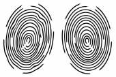Two black fingerprints on white background