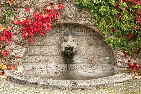Ancient fountain with autumnal red leaves