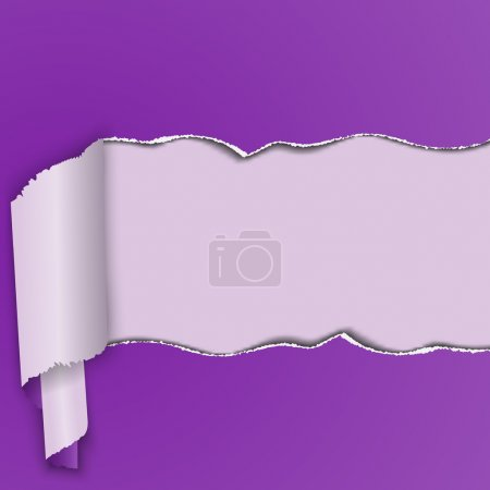 Purple background with a torn strip of paper, curled into a roll.