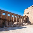 Karnak temple, Luxor, Egypt (Ancient Thebes with i...