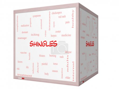 Shingles Word Cloud Concept on a 3D cube Whiteboard