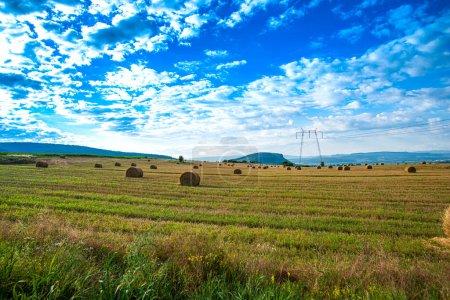 Photo pour Terres agricoles avec rouleaux de foin séché et ciel bleu avec nuages, poteaux de tension électrique - image libre de droit