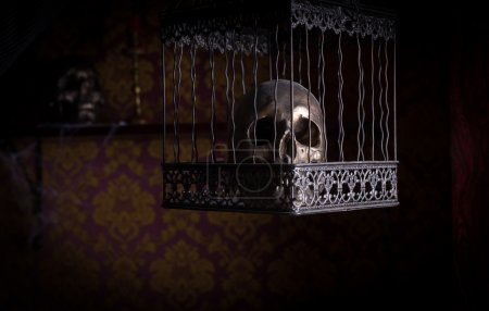 Skull in Ornate Cage in Room with Patterned Wall