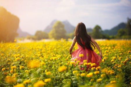 Foto de Niña asiática en campos de flores, retratos al aire libre - Imagen libre de derechos