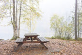 Camping bench and table in misty forest