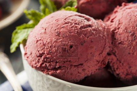 Homemade Organic Berry Sorbet Ice Cream Ready to E...