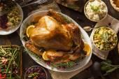 Ganz hausgemacht Thanksgiving-Truthahn