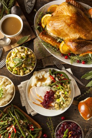Photo for Homemade Thanksgiving Turkey on a Plate with Stuffing and Potatoes - Royalty Free Image