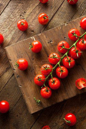 Photo for Raw Organic Red Cherry Tomatoes on the Vine - Royalty Free Image