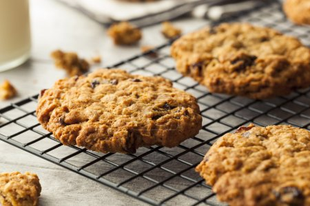 Photo for Homemade Oatmeal Raisin Cookies Ready to Eat - Royalty Free Image