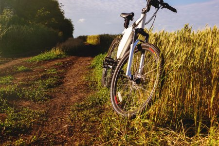 Mountain bicycle at sunny day on the dirt road