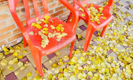 Red plastic chairs with autumnal leaves outdoor
