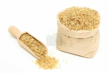 raw rice isolated