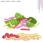 Healthcare Concept Illustration of Fresh Rainbow Swiss Chard with Vitamin K Vitamin A Vitamin C and Minerals Tablet Essential Nutrient for Life