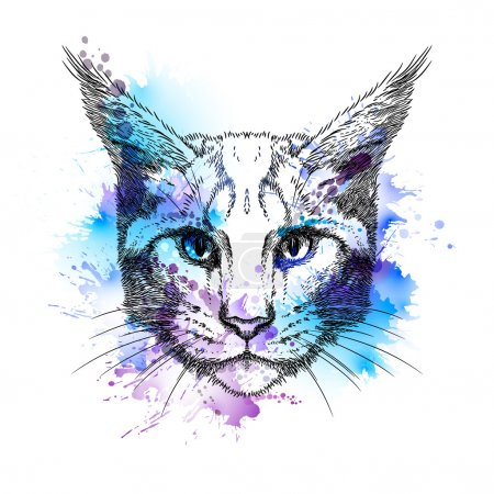 Hand Drawn  cat face with blots