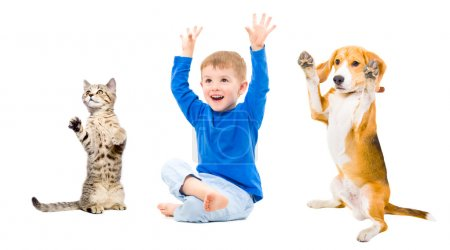 Photo for Cheerful boy, dog and cat  together with hands raised - Royalty Free Image