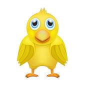Roztomilé žluté kuře