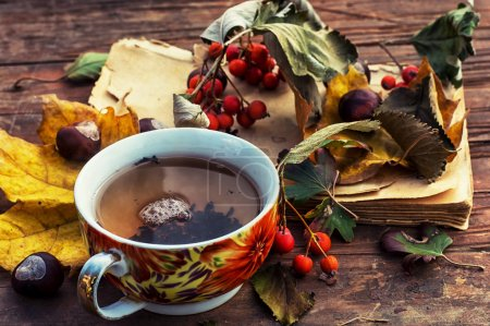 Photo for Cup warming autumn tea in cold weather - Royalty Free Image