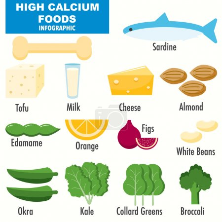 High Calcium foods infographics