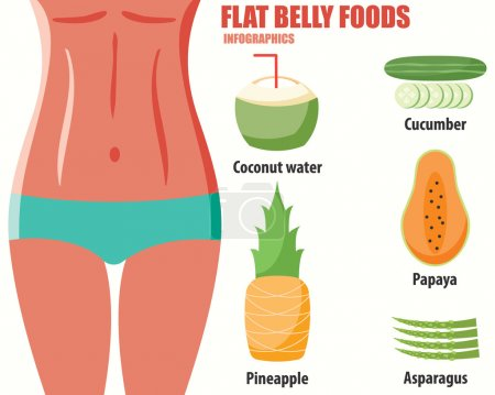 Flat belly foods infographics