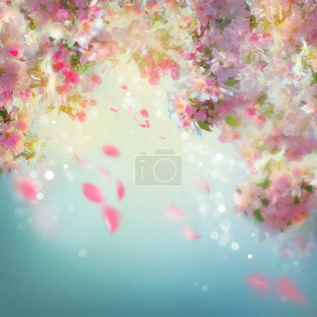 Photo pour Fond de fleur de cerisier de printemps avec pétales tombants - image libre de droit