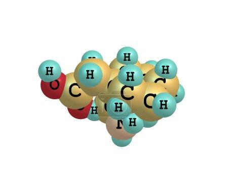 Gabapentin molecule isolated on white