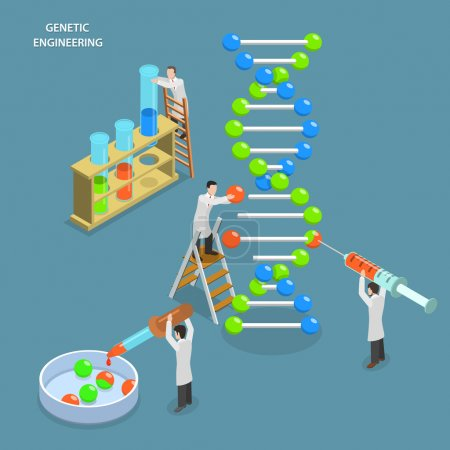 Illustration for Genetic engineering isometric flat vector concept. Scientists in laboratory are changing DNA structure. Medical, biological, molecular research. - Royalty Free Image