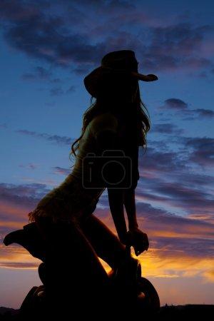 Beautiful cowgirl silhouette