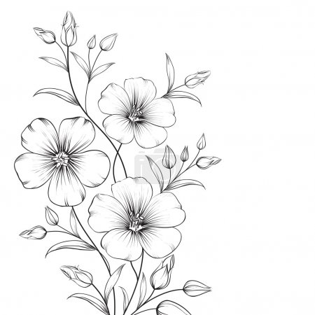 Illustration for Linum flower isolated over white background. Vector illustration. - Royalty Free Image