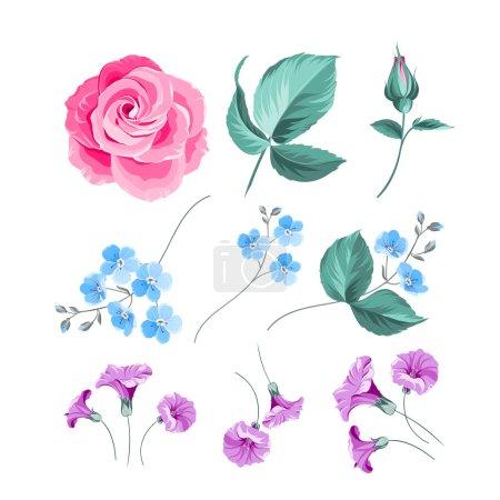 Set of flowers.