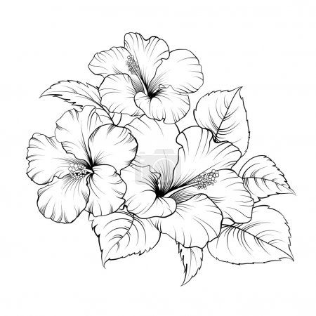 Illustration for Flower of mallow on a white background. Vector illustration - Royalty Free Image