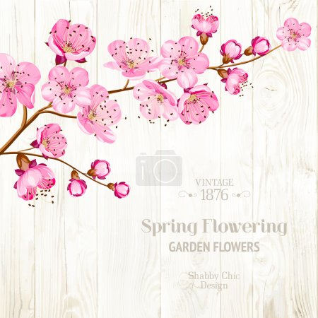 Illustration for Lable card with template text and flower branch on wooden background. Vector illustration - Royalty Free Image