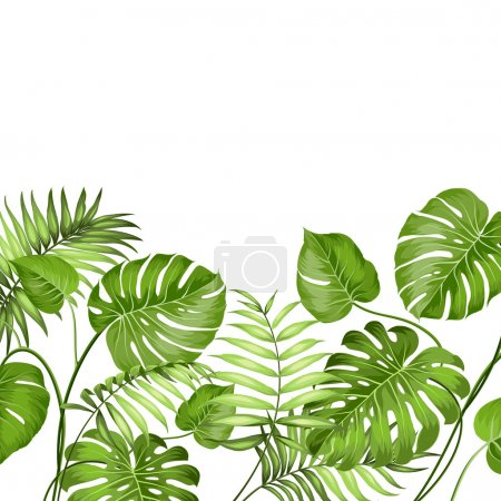 Illustration for Tropical leaves design for text card. Vector illustration - Royalty Free Image