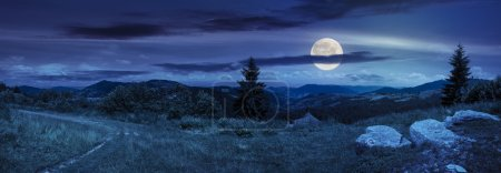Photo for Pnoramic collage  landscape. boulders on the meadow with path on the hillside and two pine trees on top of mountain range at night in full moon light - Royalty Free Image