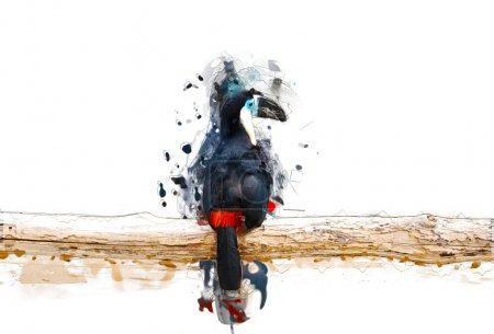 Toucan on the branch, abstract animal concept