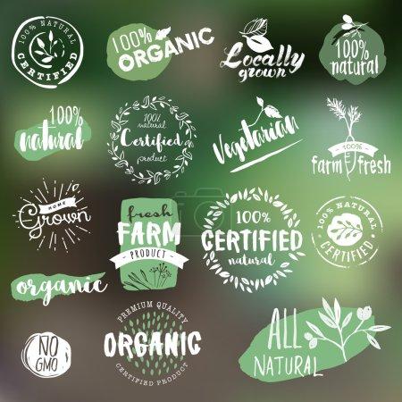 Photo pour Étiquettes dessinées à la main et collection de badges pour les aliments et boissons biologiques, les produits naturels, le restaurant, le marché des aliments sains et la production, sur fond de nature. Illustrations vectorielles . - image libre de droit