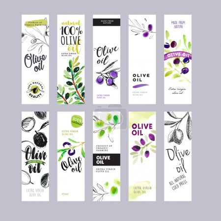 Illustration for Hand drawn watercolor olive oil labels collection. Vector illustrations concepts for olive oil packaging. - Royalty Free Image