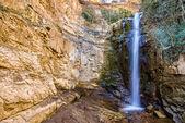 Vodopád v botanické zahrady z Tbilisi