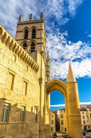 Photo pour Cathédrale Saint-Pierre de Montpellier - France, Languedoc-Roussillon - image libre de droit