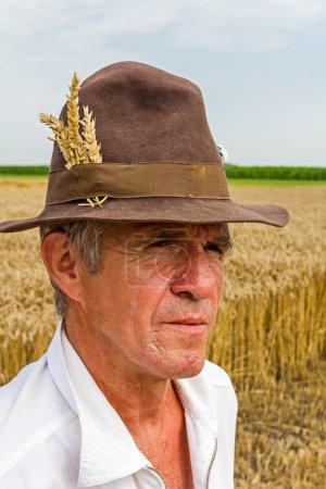 Farmer is looking grain field with a wheat ears in...